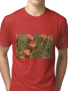 Bumble Bee on bright pink Indian Paintbrush flowers Tri-blend T-Shirt