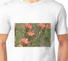 Bumble Bee on bright pink Indian Paintbrush flowers Unisex T-Shirt