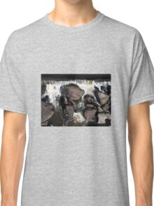 Autumn Rapids, Cataract Gorge, Tasmania Classic T-Shirt