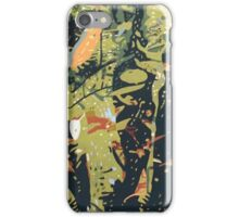 Silent Reflection, Cairns iPhone Case/Skin