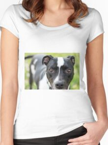 Closeup of black and white dog Women's Fitted Scoop T-Shirt