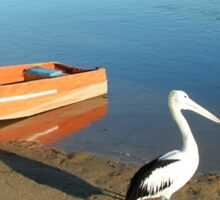 Picturesque Peaceful Pelican and Boat Sticker