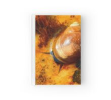 SNAILSNAIL Hardcover Journal