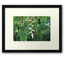 Beautiful Tropical Greenery Framed Print