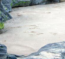 Moss on rocks at beach in Queensland Sticker