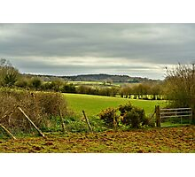 Lush Somerset Photographic Print