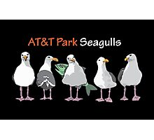 AT&T Seagulls Photographic Print