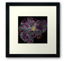 A fantstic enchanted rose Framed Print