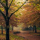 Autumn Fairytale by yolanda