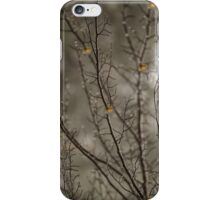 Touch of Autumn iPhone Case/Skin