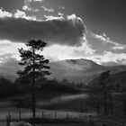 Tarn Hows 1 by Emma Tiley