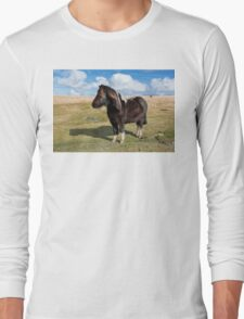 Dartmoor Pony Long Sleeve T-Shirt