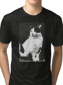 Domino, the Black & White Cat Tri-blend T-Shirt