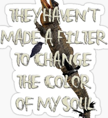 They Haven't  Made A Filter  To Change  The Color  Of My Soul Sticker