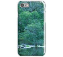 Green Glade iPhone Case/Skin