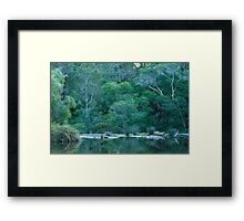 Green Glade Framed Print