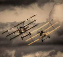 The Great War Display Team by Nigel Bangert