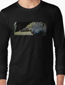 Snoozing Long Sleeve T-Shirt