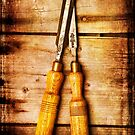 Old Chisels by Dave Hare