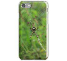 Orb Weaver Spider in a Web iPhone Case/Skin