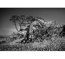 Port Arlington House Photographic Print