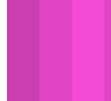 Pinks by Andrew Alcock
