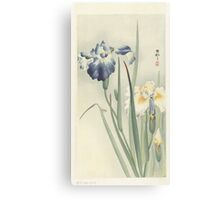 Irissen, Ohara Koson, Anonymous Canvas Print
