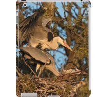 Mating Grey Herons iPad Case/Skin