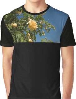 Yellow roses in full bloom Graphic T-Shirt