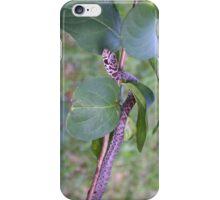 Garter Snake in Crepe Myrtle Tree iPhone Case/Skin