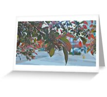 Through The Leaves (Painted) Greeting Card