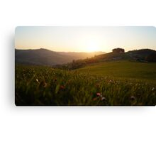sunset in m  Canvas Print
