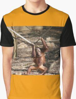 Baby Orangutan  Graphic T-Shirt