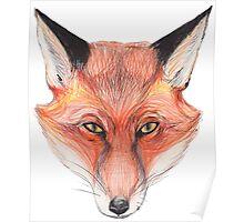 foxhead Poster