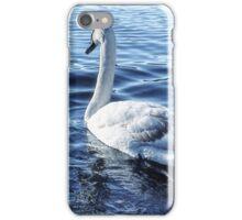 Swan On Lake iPhone Case/Skin