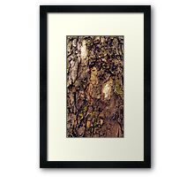 Bark Study 2 Framed Print
