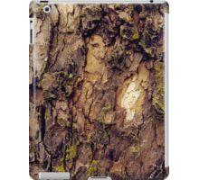 Bark Study 2 iPad Case/Skin