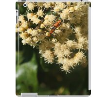Orange and Black Insect on a Flower iPad Case/Skin