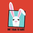DON'T BLAME THE RABBIT by Jean Gregory  Evans