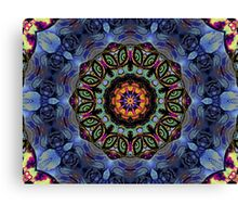 Windows To The Universe Canvas Print
