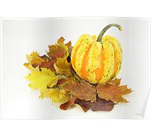 Thanksgiving, Fall. Autumn etude with pumpkin. Poster