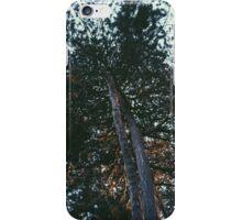 Retro Tree iPhone Case/Skin