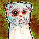 Infected Sugar Cat by byronrempel