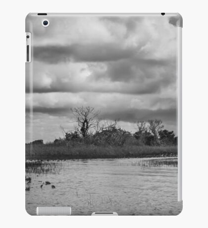Everglades iPad Case/Skin