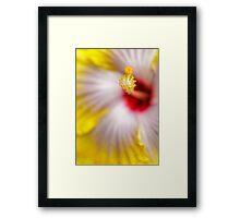 Yellow Hibiscus macro Framed Print