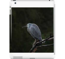White-Faced Heron iPad Case/Skin