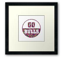 Go Bulls Framed Print