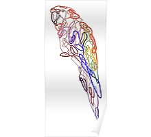 Parrot Knot Poster