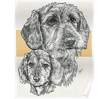 Dachshund, wire-haired, Father & Son Poster