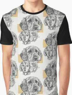 Dachshund, wire-haired, Father & Son Graphic T-Shirt